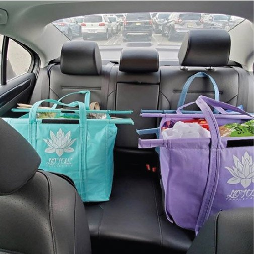 Lotus Trolley Bags in Car